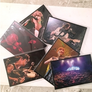 ポストカード6枚セット photo by AZUSA TAKADA