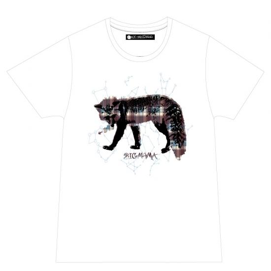+11℃ツアー Tシャツ(ホワイト)